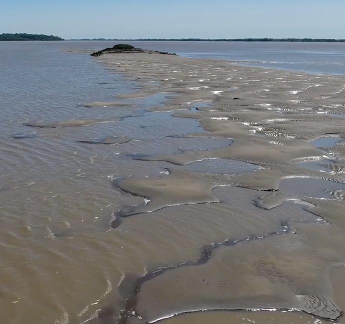 Activités Nature et Estuaire
